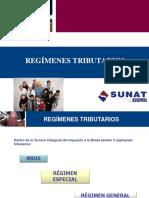 regimenestributarios20142-140625075315-phpapp02