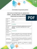 Protocolo para el desarrollo del componente práctico.docx