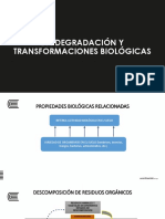 Biodegradación y transformaciones biologicas