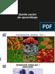 Quinta Sesión Teórica de Microbiología . 20017 - i (1)