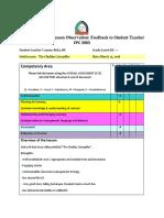 caterpillar feedback - 2