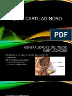 Tejido cartilaginoso (1)