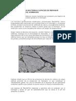 Descubren Bacterias Capaces de Reparar Grietas en El Hormigón (1)