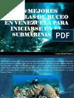 Carlos Michel Fumero - Las Mejores Escuelas de Buceo en Venezuela Para Iniciarse en El Submarinismo