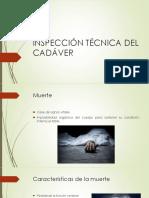 Media filiación.pptx