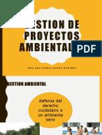 TEMA 1 GESTION AMBIENTAL.pdf