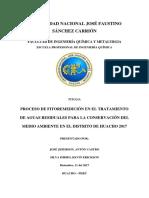 Proceso de Fitoremedición en El Tratamiento de Aguas Residuales Para La Conservación Del Medio Ambiente en El Distrito de Huacho 2017