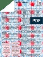 cardiotonicos-EFMP2.docx