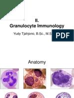 2. Granulocyte Immunology