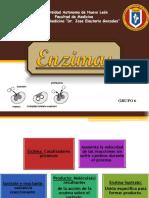 enzimas exposición
