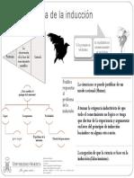 El problema de la inducción.pdf