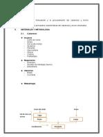 Informe Cabanossi y Tocino