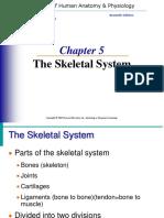 Skeletal System 2014