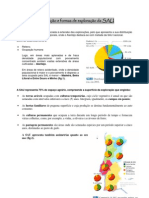 4-Distribuição e formas de exploração da SAU