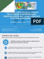 Licenta Prezentare Ppt 2013