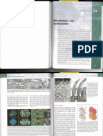 Microtubules and Centrosomes.pdf
