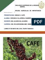 Unidad 5 Cafe