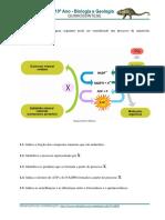 220056143-10-12-quimiossintese