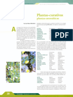Plantas Curativas Plantas Aromaticas
