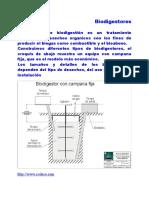 45637_Biodigestores.doc