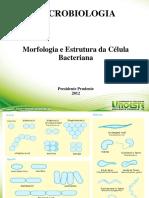 Livro_Bioquimica.pdf