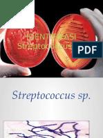 Asistensian Streptococcus 2014-1