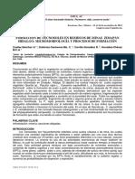 Formación de tecnosoles de residuos de minas, Zimapán, Hidalgo