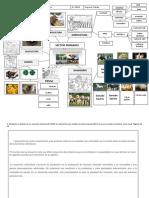Formato 2 - Ruralidad (12)