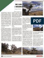 Conservación de los relictos bosques de Quinual en Huancavelica