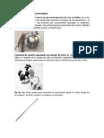 delimitaciones cafe.docx