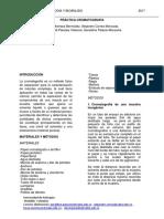 practica cromatografia.docx