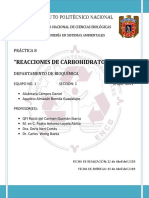 PRACTICA 8 Carbohidratos