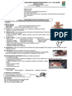 Identificando Factores Asociados a Sepsis Neonatal.