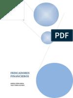 Manual de Indicadores Financieros