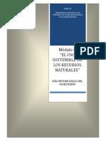 guia_del_facilitador_modulo_2.pdf