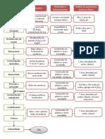 diagrama de flujo vinificación.pptx