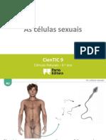 CTIC N2 - As Células Sexuais