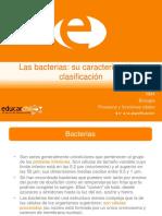 Bacterias (1)