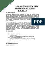 Queso Caciotta Informe