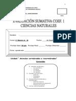 Evaluacion Sumativa Vertebrados Ciecias Naturales 2012