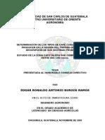 DETERMINACIN_DE_LOS_TIPOS_DE_CAF_Coffea_arabica_QUE_SE_PRODUCEN_EN_LA_REGIN_DEL_TRIFINIO-GUATEMALA_Y_DESCR.pdf