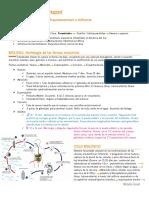 PARASITOLOGÍA RESUMEN (Michelle Gonnet) - Schistosoma mansoni.pdf