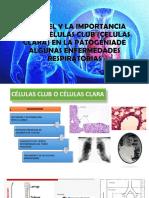 El Papel y La Importancia de Las Celulas