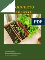 Biohuerto - Rabanito Final