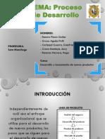 Proceso de Desarrollo FINAL (1)
