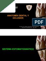 Inaugural Anatomía Dental y Oclusión