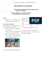 Laboratorio 6 Detergentes.docx