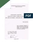 DanieliNetoMario.pdf
