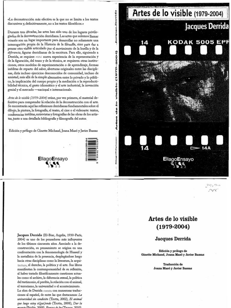 Artes de lo visible.pdf