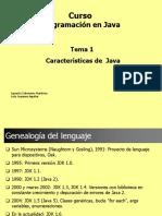 Caracteristicas Java